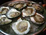 Champagne and Oysters at Public Kitchen & Bar