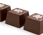 chocolate-and-salt-tasting
