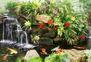 sherman-gardens