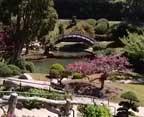 Huntington Library Japanese Gardens
