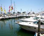 dana-point-boat-show