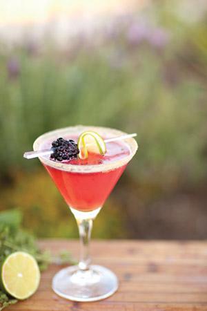 studio-cocktail