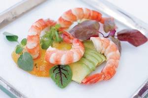 maria_shrimp