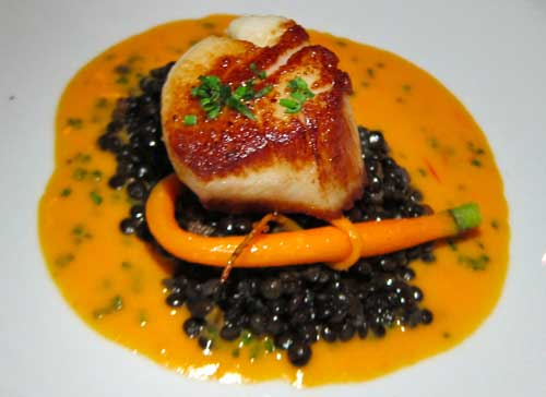 Pan seared jumbo scallop on a bed of smoked beluga lentils, tomato ...
