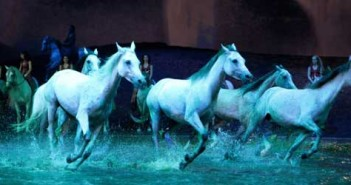 cavalia-featured