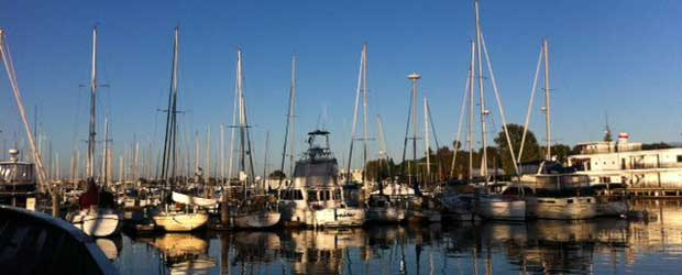 Embark on a deep sea fishing expedition with cafe del rey for Deep sea fishing marina del rey