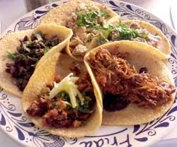 taco-sampler