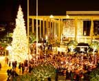 la-county-tree-lighting