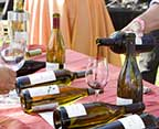 balboa-wine-festival
