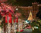 Rodeo Drive Holiday Lighting