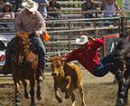ramona-rodeo