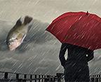 rainstopsfalling_banner