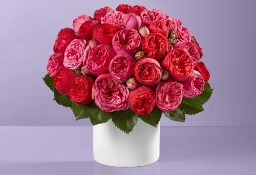 Olyve + Alexandra Valentine's bouquet