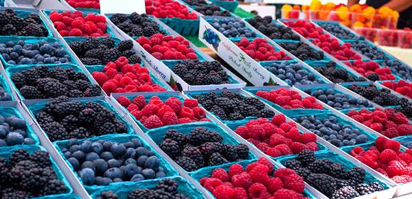 DTSA Farmers Market