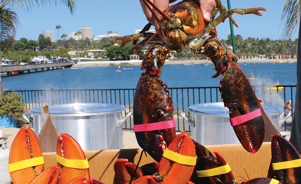 Lobsterfest at Newport Dunes