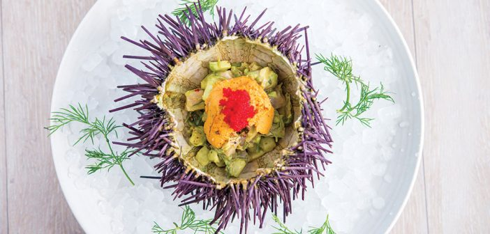 Where to Find Top Uni Dishes in Orange County
