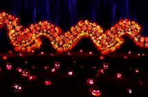 Rise of the Jack O' Lanterns