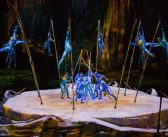 Cirque du Soleil Hits SoCal with Toruk—The First Flight