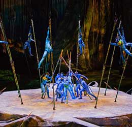 Cirque du Soleil Toruk—The First Flight