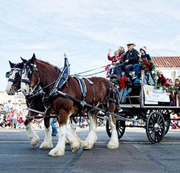 la-jolla-parade2