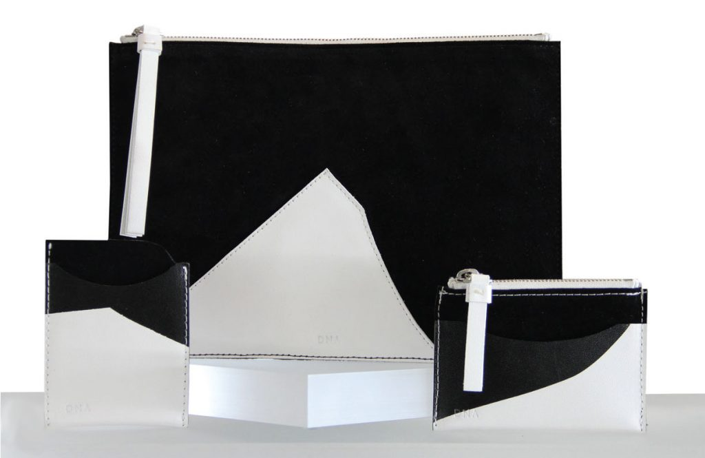 DNA's Ellsworth Kelly-inspired leather goods
