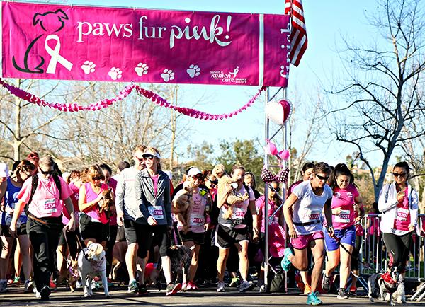 Paws Fur Pink