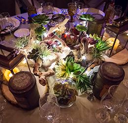 succulents_PC-Disney-Event-Group