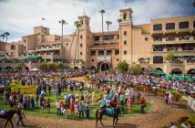 Catch thoroughbred racing at the Del Mar racetrack.