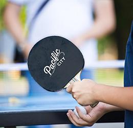 2017-Ping-Pong