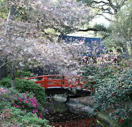 Japanese Garden Festival