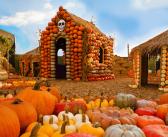 30+ Ways to Celebrate Halloween in Los Angeles