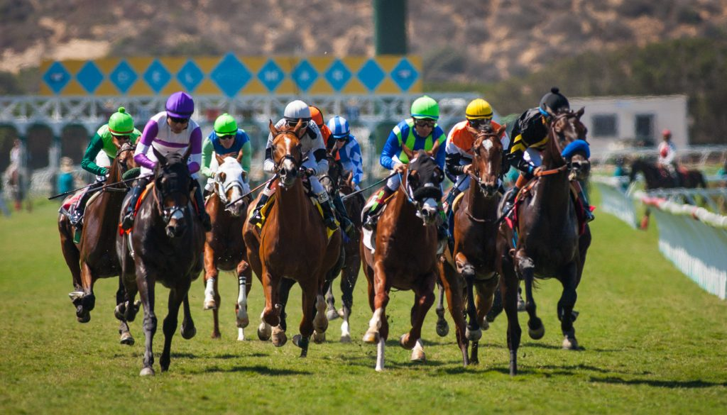 Head to Del Mar for a season of racing, with highlights including the renowned Breeders' Cup and Turf Club Sundays.