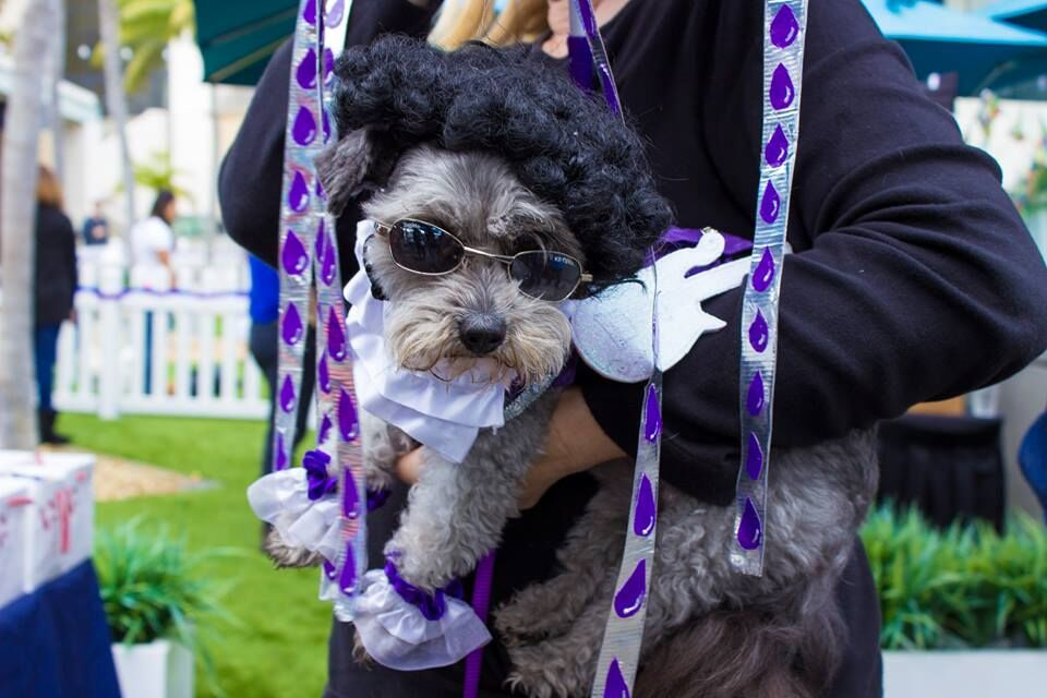 Guests and their furry companions will enjoy the Paws on the Patio event, featuring a dog costume contest and dog-friendly craft beer.