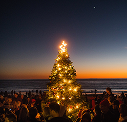 21st-Crystal-Cove-Tree-Lighting-photo-by-Paul-F.-Gero