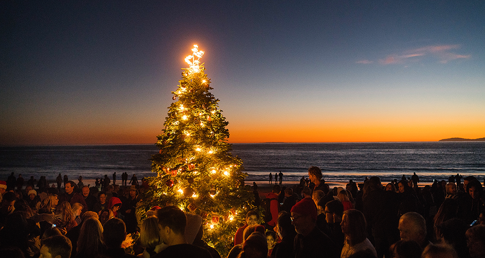 BANNER-21st-Crystal-Cove-Tree-Lighting-photo-by-Paul-F.-Gero