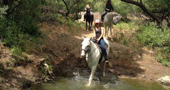 Wild Western Adventure: Exploring Calabasas and Agoura Hills