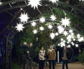 Top Los Angeles Things to Do in November