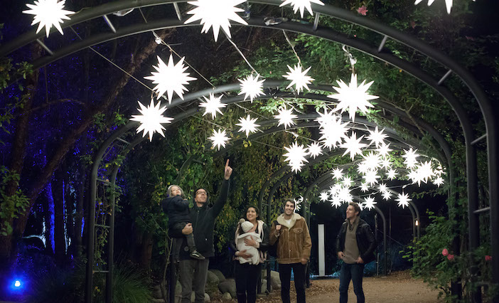 Stars in the Rose Garden photo by Jake Fabricius | Los Angeles Things to Do