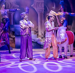 Aladdin-and-His-Winter-Wish
