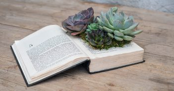 Classic Succulent Book Planter Workshop