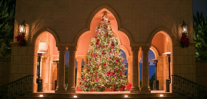San Diego Christmas Dining Guide 2017