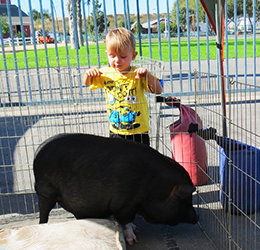 8th-Annual-Pet-Days-at-OC-Market