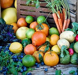 Grow-Your-Own-My-Edible-Garden