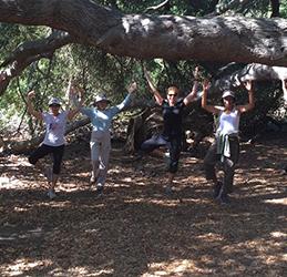 Yoga-Hike