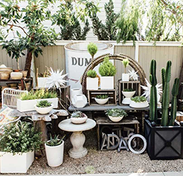 Molly Wood Garden Design's Biggest Sale of the Year