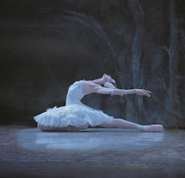 'Swan Lake'