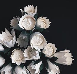 Paper-Flowers-proteas