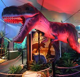 Dinosaurs-Around-the-World