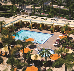 Renaissance-Newport-Beach-Palms-Pool