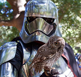 'Star-Wars'-Day-at-the-OC-Zoo
